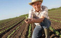 KOSGEB Çiftçi Desteği Nasıl Alınır?