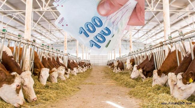 KOSGEB Tarım ve Hayvancılık Kredisi Nasıl Alınır